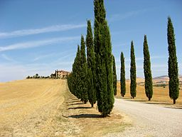 Val-d'Orcia, Tuscany