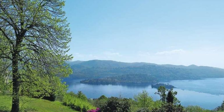 04-lake-view-springtime